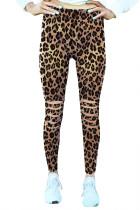 شلوار استرال لباس ورزشی Leopard Hollow Out Fitness