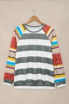 Färgglad tröja med raglanärm i leopardrandig skarvning