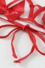 Rotes zweiteiliges Bralette-Set mit Schleifen